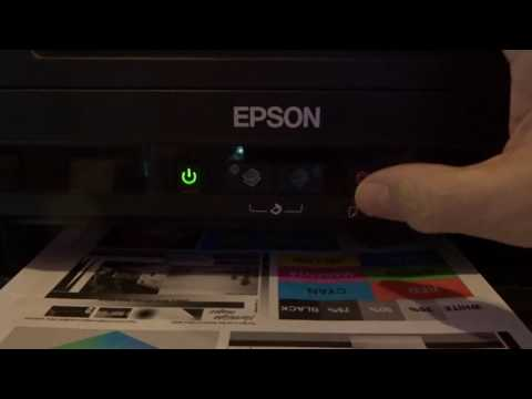 How to Reset Epson L110, L210, L300, L350 & L355 - Solved Red Light