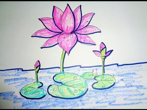 How To Draw Lotus Step By Step - Easy Drawing